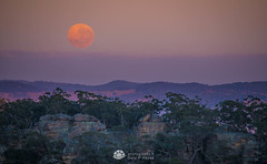 Moonset Mitchells _.jpg (Gary Hayes) Tags: australia sunsrisesunset mountvictoria landscape cloudscapes newsouthwales bluemountains