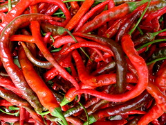 Chillies? what KIND of chillies? (ulysses68) Tags: china red hot market chengdu spicy sichuan rosso  mercato peperoncini cina chillies    piccante speziato