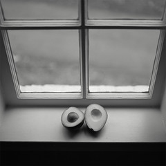 Untitled (Owen Luther) Tags: light two blackandwhite white black film window monochrome fruit mediumformat square mono sill hasselblad halves 50 ilford fp4 pulled selfdeveloped hasselblad500cm avocodo owenluther