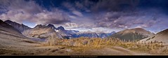 *** Rockwall Range *** (Marina Bass (back in NY)) Tags: ca autumn panorama canada mountains fall nature clouds rockies bc britishcolumbia location ridge alpine backpacking northamerica rockymountains wilderness vegitation larches rockwall overview environments kootenaypark numapass marinabassphotography