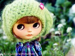 Mocha, my lily spring girl