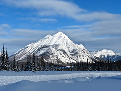 A view from Mt. Shark (annkelliott) Tags: trees winter canada mountains nature landscape kananaskis scenery seasons alberta peaks snowcovered smithdorrien kcountry
