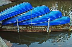 Pause (Lutz Koch) Tags: blue winter lake water germany deutschland boot boat wasser wiesbaden break hessen pentax rest pause blau teich hesse kurpark k200d elkaypics