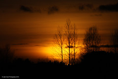 Sunset. 2/2/13. (Jake Cook) Tags: uk trees sunset england orange beautiful yellow canon dark newcastle lens photography amazing tyne 70300mm upon 500d spectacularsunsetsandsunrises