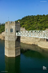 Steel Bridge :: Shing Mun Reservoir (), Hong Kong (hk_bellchan) Tags: bridge trees sunset hk moon monkey steel jubilee reservoir hong kong wan   shing afterglow  mun paperbark melaleuca       tsuen bellmouth shingmoon
