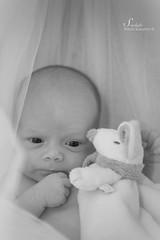 Neo (starlight__photos) Tags: life family famille portrait baby canon bb nouveaun