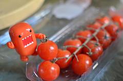 Berry Picking (WindUpDucks) Tags: tomato cherry berry tomatoes domo picking qee toy2r