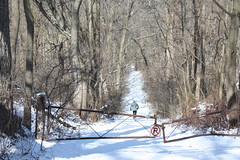 Pennypack Wilderness Area (Montgomery County Planning Commission) Tags: county pa upper trust restoration montgomery wilderness township ecological pennypack moreland