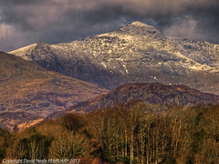 From a Distance - Snowdon (Yr Wyddfa) (Daveyboy_75) Tags: trees mountain mountains wales zoom mountainclimbing olympus snowcapped snowdonia hdr zoomlens p