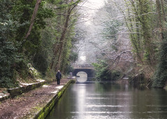 Down by the Canal [44/365] (Vemsteroo) Tags: bridge trees winter urban snow cold ice water canon walking landscape person canal birmingham frost britain scenic 100mm photoaday 365 f28 day44 towpath waterways 6d beautyinnature project365 day44365 3652013 365the2013edition 13feb13