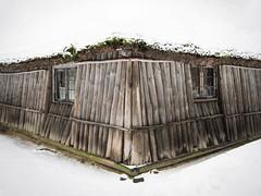 Cabin in the Woods (palimpsest*) Tags: wood windows roof lake snow cold iso200 cozy moss cabin snowy latvia hut riga snowed jugla 180secatf40 canonpowershots90 6225mm focallength749mm latvijasetnogrāfiskaisbrīvdabasmuzejs|theethnographicopenairmuseumoflatvia