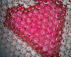 Valentine heart and drops (Northwest dad) Tags: macro water glass gum hearts drops nikon valentine micro bubble d800 105mm