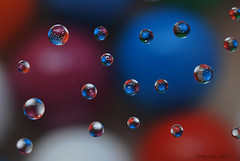 Colour  my world (Tony Dias 7) Tags: blue red white colour macro reflection art water beautiful closeup droplets drops amazing agua 7 bubbles drop tony tiny refraction dias