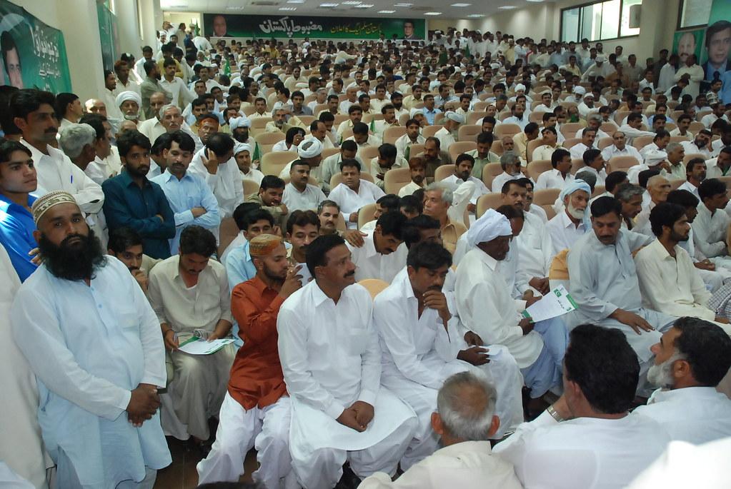 Nro pakistan essay, Gmo health risks essay