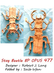 Stag Beetle bp opus 477 (Saib Irfan) Tags: paper paperart origami stag beetle creasepattern tissuefoil origamiinsects origamibugs