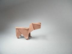 Perrito - Vicente Dolz (Rui.Roda) Tags: dog chien co origami cachorro vicente papiroflexia perrito dolz