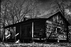 A Cabin In The Woods IMG_6808Topaz (Lord Malikai (Pyromade at large)) Tags: park flowers trees blackandwhite favorite nature yellow digital photoshop canon wow garden lens outside photography eos interestingness spring interesting fantastic flickr texas afternoon photographer view shot sweet map good top photoshopped awesome great saturday fave explore textures logcabin adobe daffodil ten stunning february dslr bandw lm incredible judas hdr 28135mm comments comment exif easttexas phenomenal 40d lordmalikai canon40d pyromade pyromadeaolcom mrsleesdaffodilgarden
