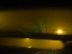 (lucidcats) Tags: light black green yellow fog oregon portland state thebestyellow