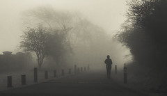 Jogging in Welsh Morning Fog (Bob Jagendorf) Tags: uk travel england blackandwhite bw woman tree sport fog sepia sony jog jagendorf nex7