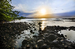 Collecting Starfish in the Sunshine (Ben Andreas Harding) Tags: blue sunset sea orange sun seascape silhouette yellow night contrast landscape hawaii evening bay coast march bright sunny late bigisland hilo brightness contrasts later tokina1116mm28