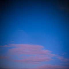 His Last Painting. (D. Stokes Photography) Tags: life street pink blue sky art beautiful pen painting holga lomo lomography pretty olympus stunning colourful imitating manic preachers holgalens epl1