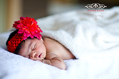 (aashee) Tags: wedding usa baby children kid infant pakistani henna ayesha weddingphotographer aashee ayeshakhanphotography