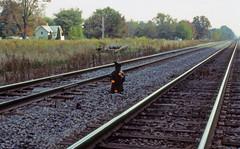 CSX_NorthBaltimore-OH_EB-Dwarf-Signal_EY1997-1 (C Telles) Tags: railroad light ohio color dwarf north baltimore bo signal position cpl csx