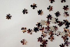 Scattered Puzzle (egorenflo) Tags: pieces scatter puzzle