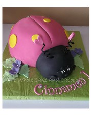 fly away home (The Whole Cake and Caboodle ( lisa )) Tags: birthday cakes cake 1st ladybird ladybug whangarei fondant caboodle