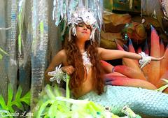 LARGA A VARA e jogue a rede na SEREIA que mulher  muito melhor  #RioDeJaneiro #Rio450 #Rio2016 #Rio450anos (  Claudio Lara ) Tags: girls brazil sexy girl rio sex brasil riodejaneiro mermaid ruiva sereia claudiolara copabacana sunsetinrio brasll brazll praiasdorio rio2016 clcrio clcbr amanhecernorio claudiol clccam claudiorio atraesdorio carnivalbyclaudio claudiocam carnavalbyclaudio rio450 rio450anos flickrbyclaudio lapabyclaudio rlodejaneiro rlodejanelro claudiobatman ciadedorio sunrisainrio braekingdawninrio parambulando