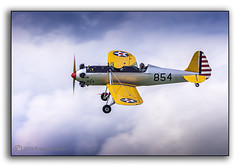 Ryan PT22 Recruit (Roland Bogush) Tags: trainer propellor usaaf monoplane sywellairshow2012
