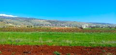 Deir el Ahmar Plain - Bekaa - Lebanon (Hanna Khoury) Tags: blue sky lebanon nature el bleu ciel paysage vigne ahmar liban landcape  deir bekaa