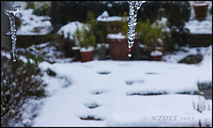 JUST A LITTLE DRIP!!! (KTDEE....) Tags: uk winter snow icicles dripping
