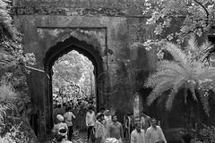 ADS_0000110084 (dickysingh) Tags: ranthambore ranthambhore hindu festival
