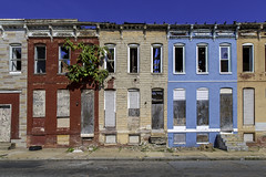 Abandoned Rowhouses - Baltimore (crabsandbeer (Kevin Moore)) Tags: abandoned baltimore city decay facade people rowhouses slums steps sunflowers urban tree nature naturewins ghettopalm rowhouse maryland poverty