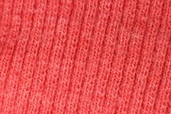 Pink life (alejandro krok) Tags: pink rosado chile sur sudamerica texture textura macro macrofotografia macrophotography tela