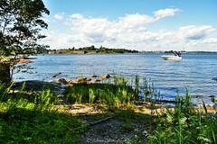 Helsinki 1 (Elena Delahaye) Tags: finland nature helsinki island sea north scandinavia suomi