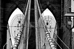 Cable View (pjpink) Tags: arches cables webbing blackandwhite bw monochrome brooklyn brooklynbridge bridge architecture nyc newyork newyorkcity ny june 2016 summer pjpink