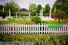 PLW_5612 (Laszlo Perger) Tags: wien vienna sterreich austria blumengarten hirschstetten flowergarden