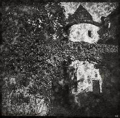 Fairy Castle (*altglas*) Tags: mediumformat mittelformat 6x6 120 film analog expired expiredfilm svema250 svema bw monochrome zeiss superikonta 53316 castle schloss weinstrase forst