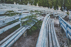Cinema #2 (Lance P Cridge) Tags: cinema abandonded russia russian crimea bench plant nature reclaim wood adventure summer demolished desolate cracked