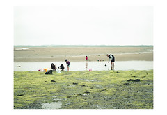 (harald wawrzyniak) Tags: analogue analog film scan kodak portra 120mm medium format harald wawrzyniak ireland irland eire ire people kids sea fishing crab 2016 mamiya 645af