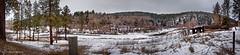 Winter Palouse (Jibby!) Tags: panorama snow ice rural creek landscape stream hangman handheld washingtonstate stitched palouse 180