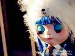 ADAD 2013, 14/365