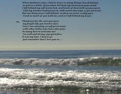 For Trish, and remembering Miss Stevie (Sandytravelbug) Tags: ocean poem missstevie