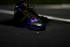 IMG_9965 (Never Wear Them) Tags: black never sol del photography gold purple zoom you 5 8 away nike wear v jacket kobe what them did viii today wdywt nwt3000