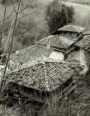 En Becea (Paeda) Tags: asturias hrreo asturies cangasdeons becea canguesdons