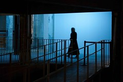 La visite (gherm) Tags: blue light woman paris france museum canon concrete neon lumire femme muse bleu handrail beams palaisdetokyo non bton rampe poutres gherm eos5dmarkii formatpaysage 1302013252