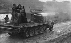 Selbstfahrlafette 2 cm Flakvierling 38 auf Fahrgestell Zugkraftwagen 8t (Sd.Kfz. 7/1) (Krueger Waffen) Tags: war tank wwii armor ww2 armour armored waffenss aaa tanks panzer secondworldwar afv worldwartwo antiaircraft antitank armoredvehicle luftwaffe armoured armoredcar wehrmacht sdkfz pzkpfw secondworldwartanks worldwartwotanks tanksofthesecondworldwar antiaircraftvehicles selbstfahrlafette2cmflakvierling38auffahrgestellzugkraftwagen8tsdkfz71