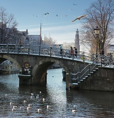 Crossing the steep and snowy bridge in the heart of Amsterdam (Bn) Tags: world street trees windows winter light sunset people seagulls house snow cold holland heritage church water netherlands dutch amsterdam weather bike corner walking frank anne boat canal cozy cool topf50 colorful jan snowy walk seagull bikes atmosphere scooter file canals unesco prinsengracht snowfall sled topf100 mokum rembrandt meeuw meeuwen gezellig cafs jordaan sleding slee bycicle westertoren brouwersgracht nowandthen pakhuis lange westerkerk wester celcius grachtengordel rondvaartboot 1000km 100faves 50faves 1c lekkersluis